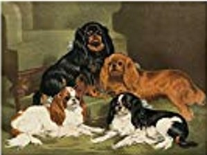 toy spaniels canvas artwork