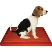 ugodog indoor dog potty