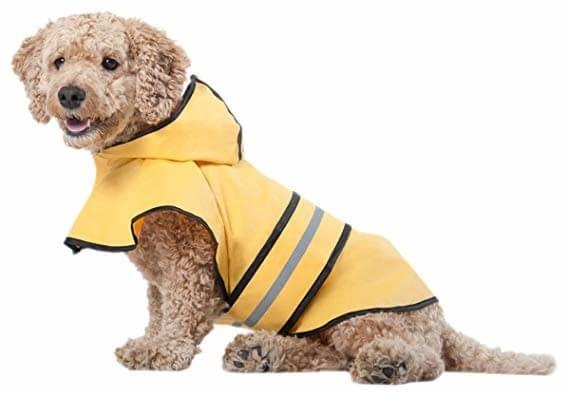 yellow raincoat for dog