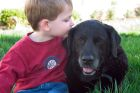 Little Boy With Black Lab