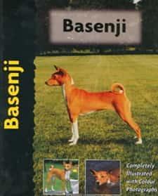 Basenji dog breed guide book