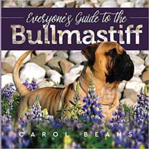 Bullmastiff guide book
