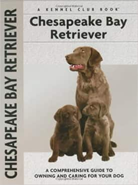 Chesapeake Bay Retriever dog guide book