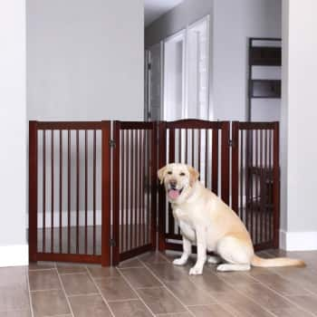 variable size indoor dog gate