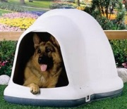 dogloo dog house