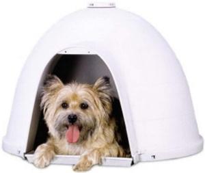 dogloo for small to medium dog