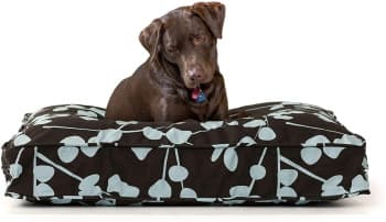 dog bed with cluster fiber filled cushion by eLuxury
