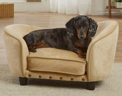 elevated wrap around sofa bed perfect for small dogs