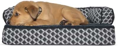 orthopedic pet sofa by furhaven