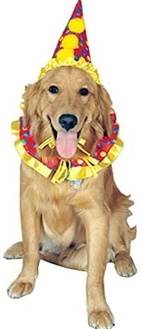 clown costume for dog