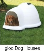 igloo-shaped dog houses