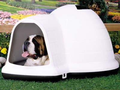 igloo dog house for year round dog shelter