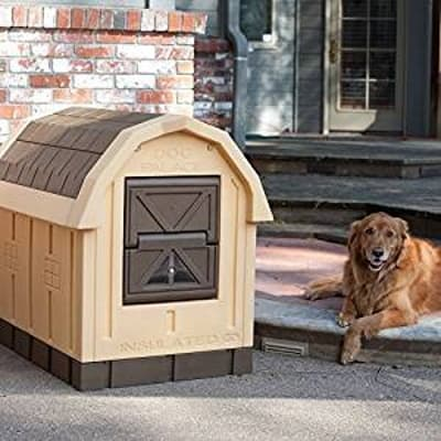 insulated dog house shown outside house with dog