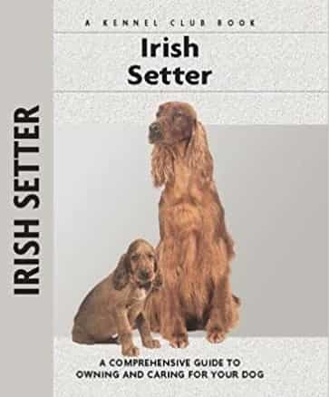 Irish Setter dog breed guide book
