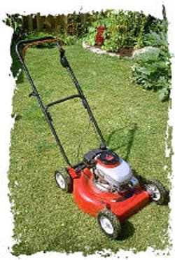 lawnmower on the lawn