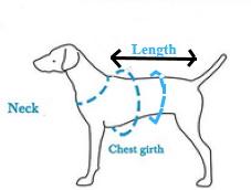 dog life jacket measuring