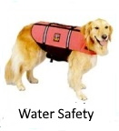 dog life jacket for water activities