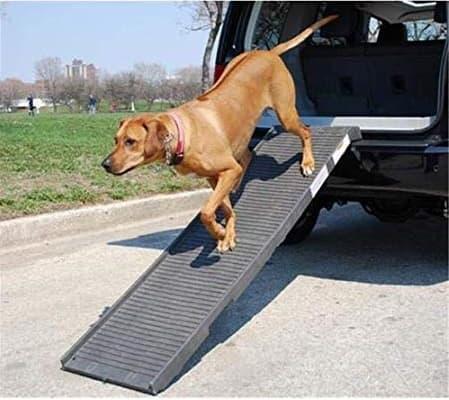 pet using petstep original folding dog ramp to get into open tailgate of car