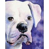 <i>Boxer Art Print - Link Below</i>