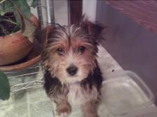 Oliver at 3 months