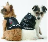 two dogs wearing Doggles Biker Vest Dog Harnesses