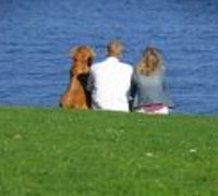 contact us, couple with dog looking at ocean