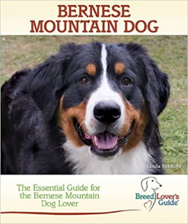 bernese guide book for owners