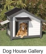 variety of dog houses